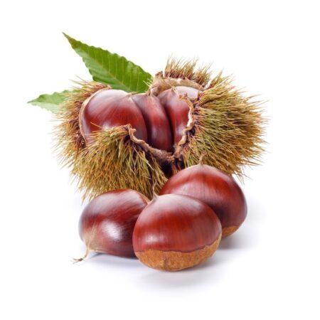 Castagne - Ingrosso Frutta e Verdura