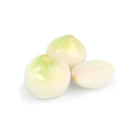 Cipolla pulita- Ingrosso Frutta e Verdura