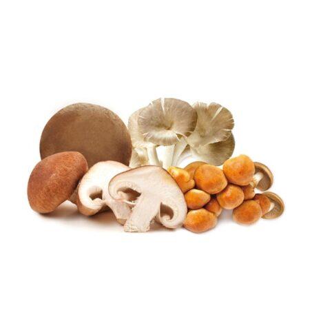 Funghi - Ingrosso Frutta e Verdura