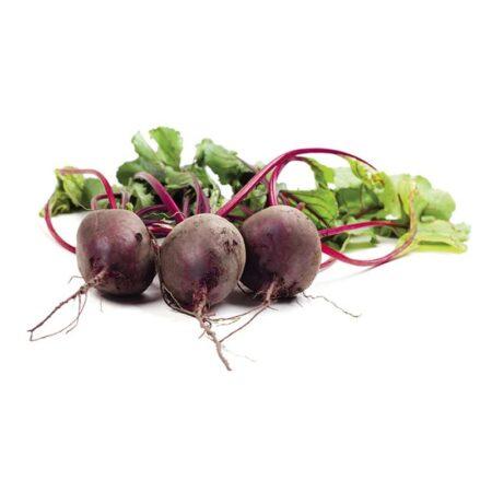 Rapa - Ingrosso Frutta e Verdura