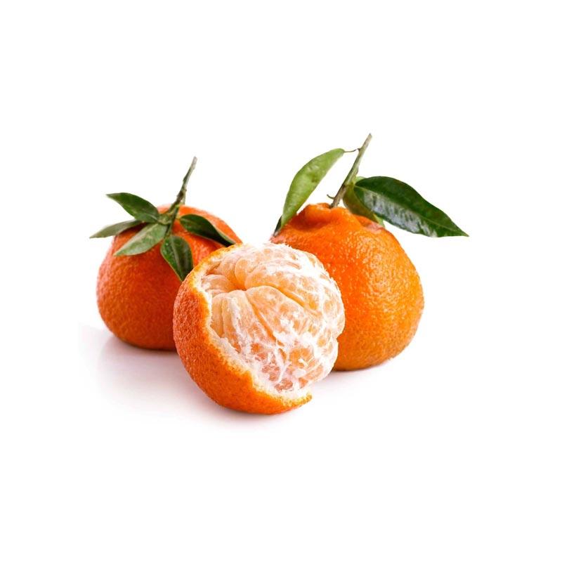 Satsuma - Ingrosso Frutta e Verdura
