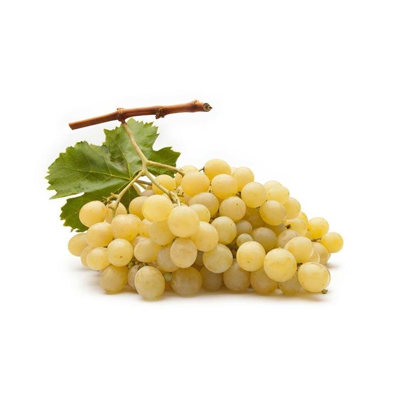 Uva da tavola - Ingrosso Frutta e Verdura